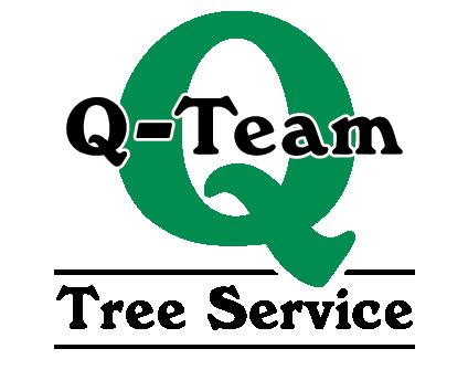 Q-Team